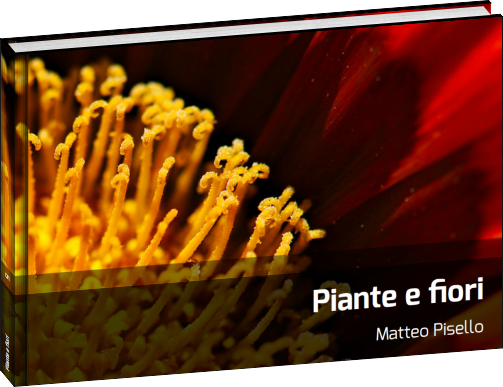 Fotolibri - Piante e fiori - 01
