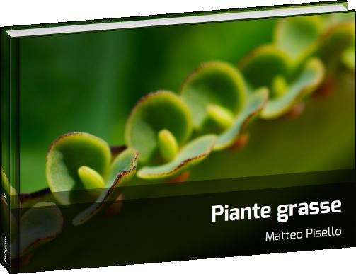 Fotolibri - Piante grasse - 01
